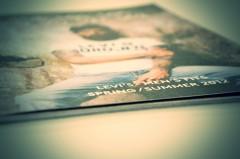 Brochure-LEVIS